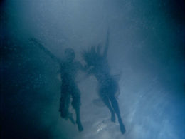 Bill Viola, The Fall Into Paradise